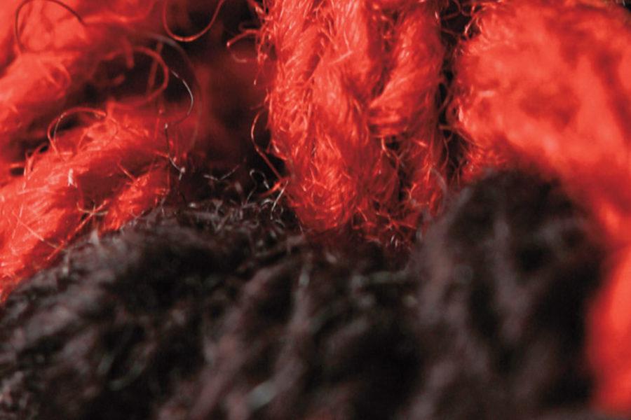 wool collection – sviluppo prodotto